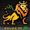 bolksTV